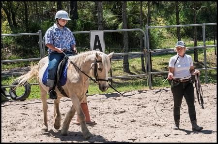 Horse Riding Lessons So Expensive
