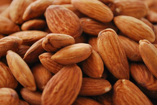 almonds as a food for horses